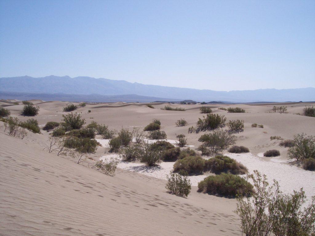 Death Valley, Sanddünen