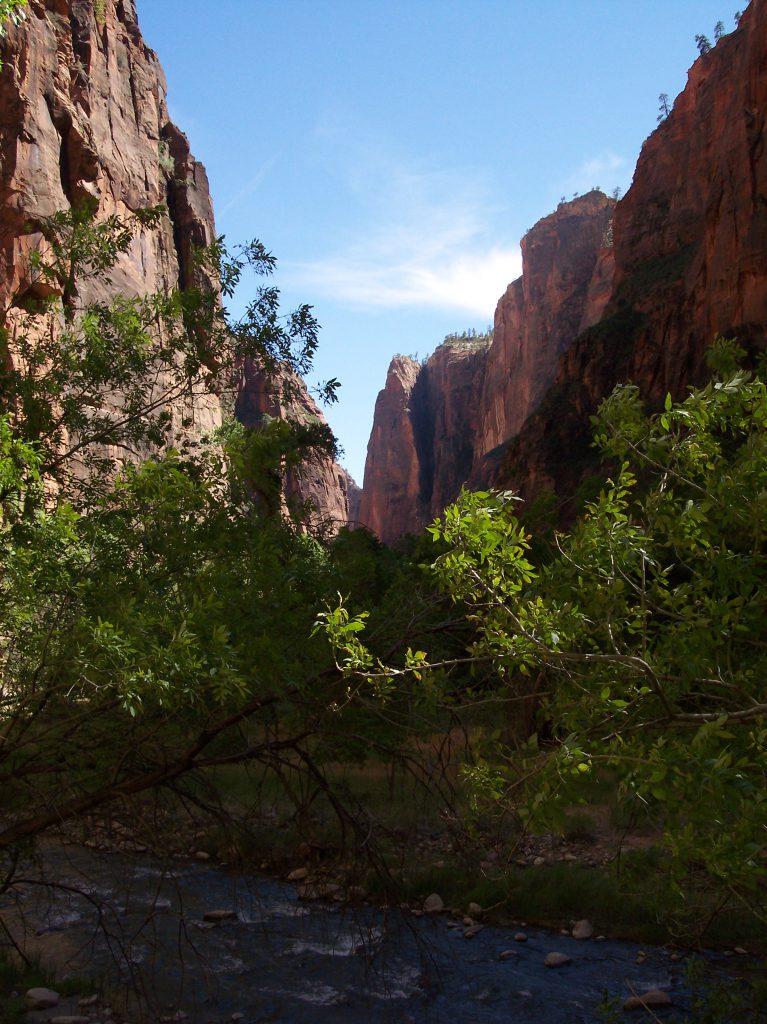 Felswände, Zion National Park