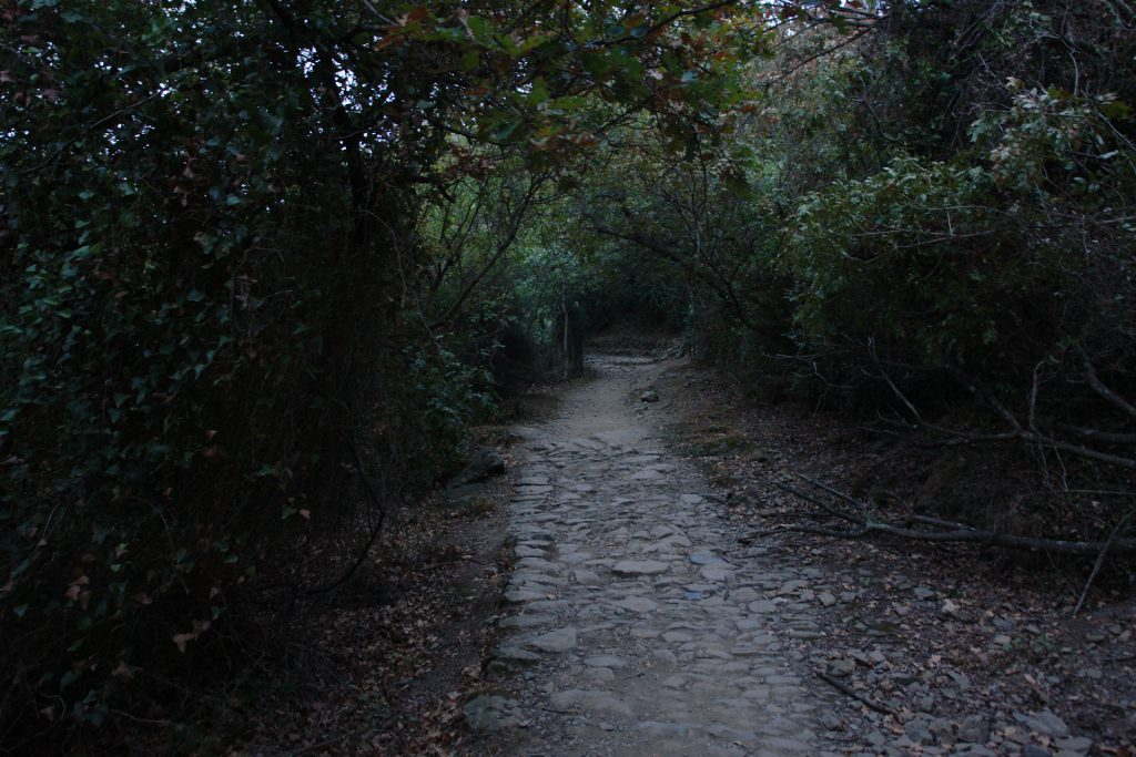 Originale römische Pflasterung der Via Iulia Augusta