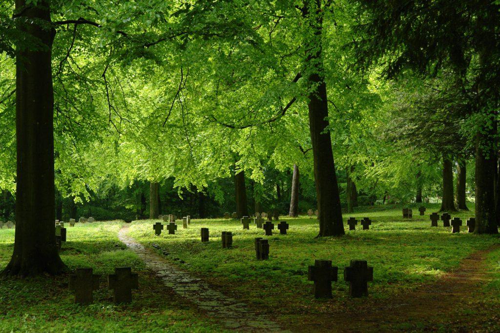 Soldatengräber auf dem Heidelberger Ehrenfriedhof