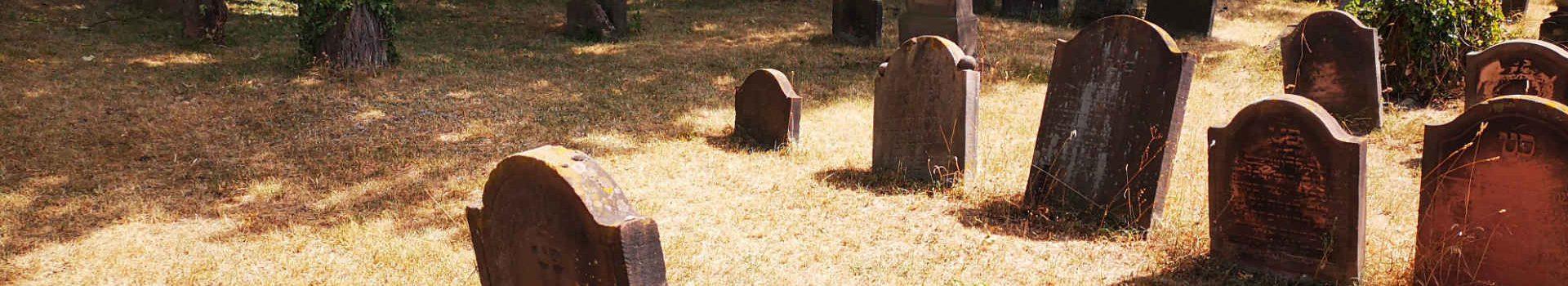 """""""Heiliger Sand"""" – Der älteste jüdische Friedhof Europas"""
