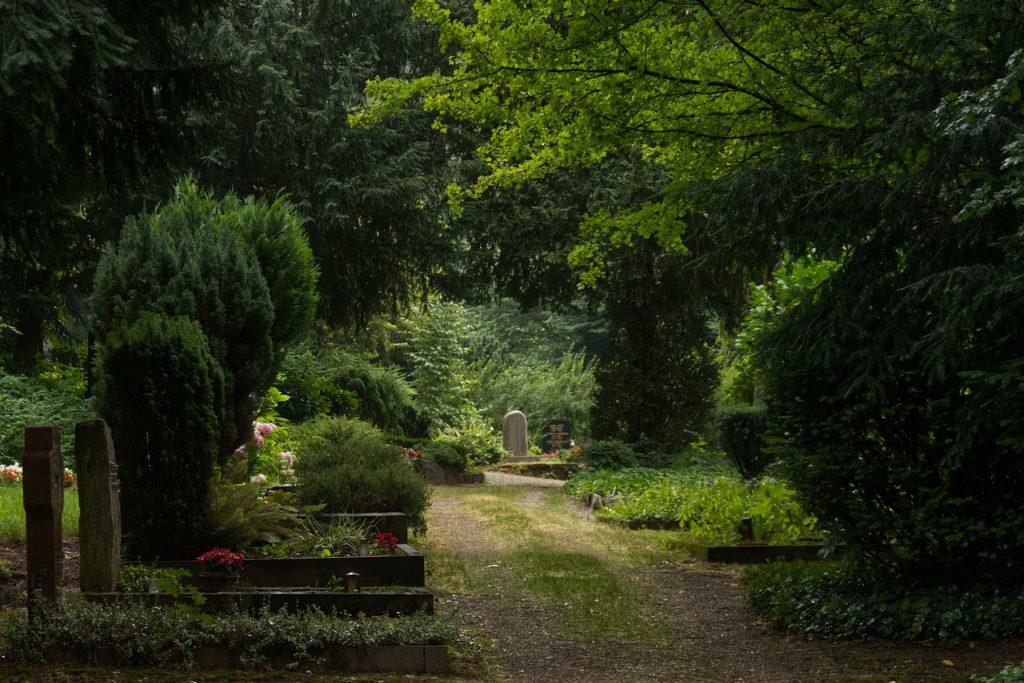 Weg über den Bergfriedhof