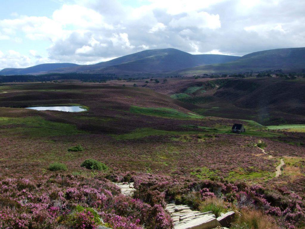 Ausblick über die Highlands
