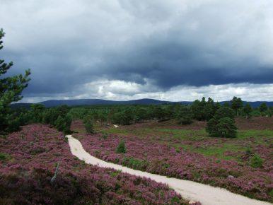 2 Wochen backpacking in den schottischen Highlands