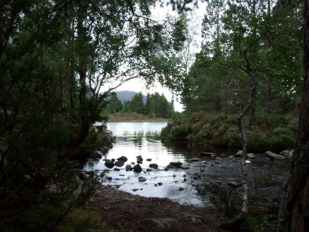 Bei Loch an Eilein