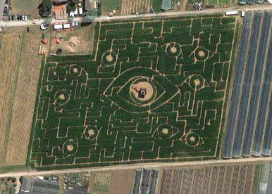Irreführend – Das Ladenburger Maislabyrinth :D