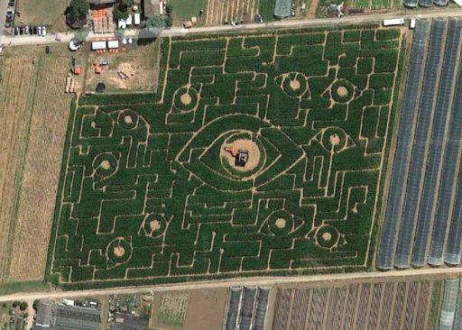 Maislabyrinth Ladenburg