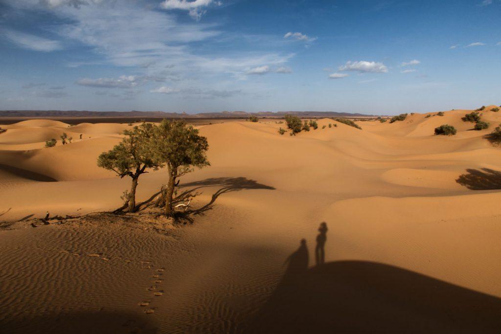Pierre und ich in der Wüste bei M'hamid (südlich von Zagora)