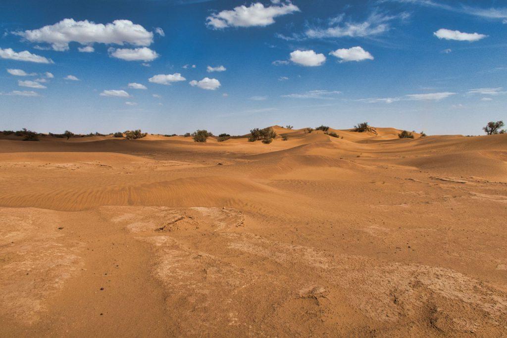 Wüstenlandschaft von Zagora