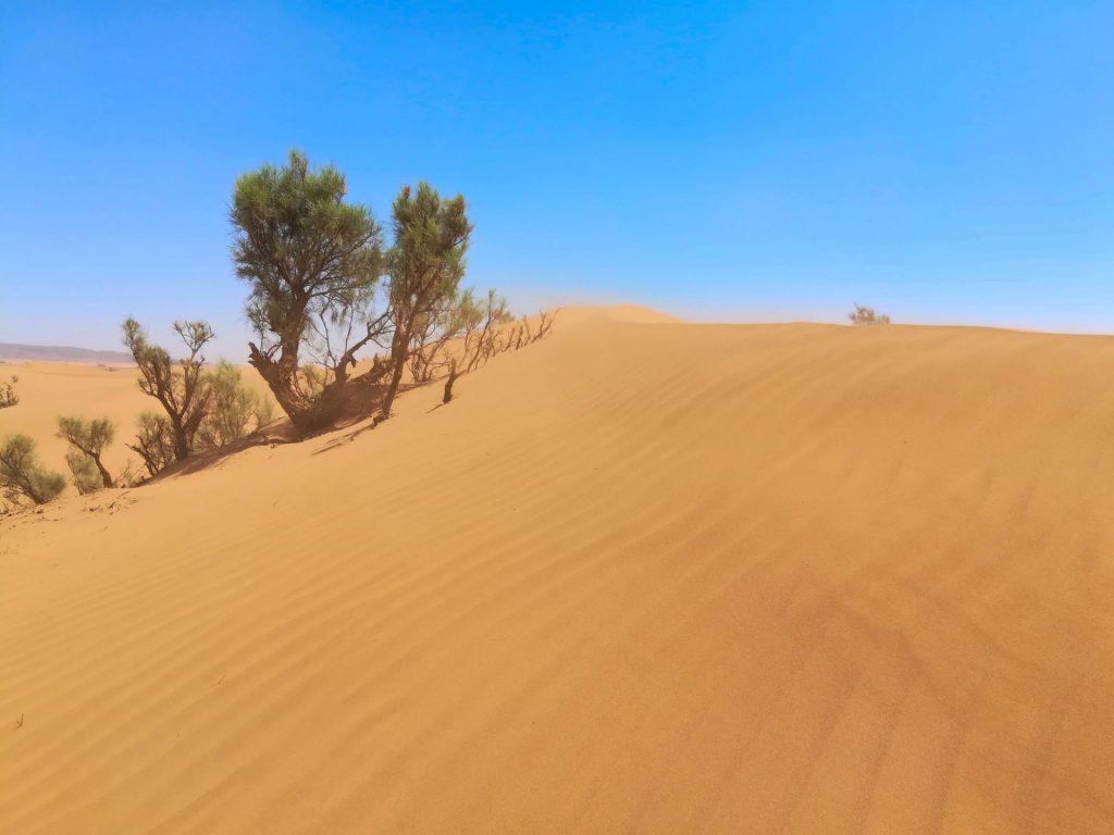 Fliegender Sand