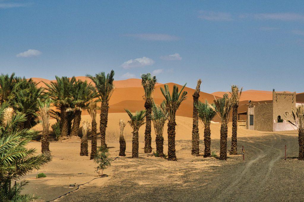 Wüstendünen bei Hassilabied