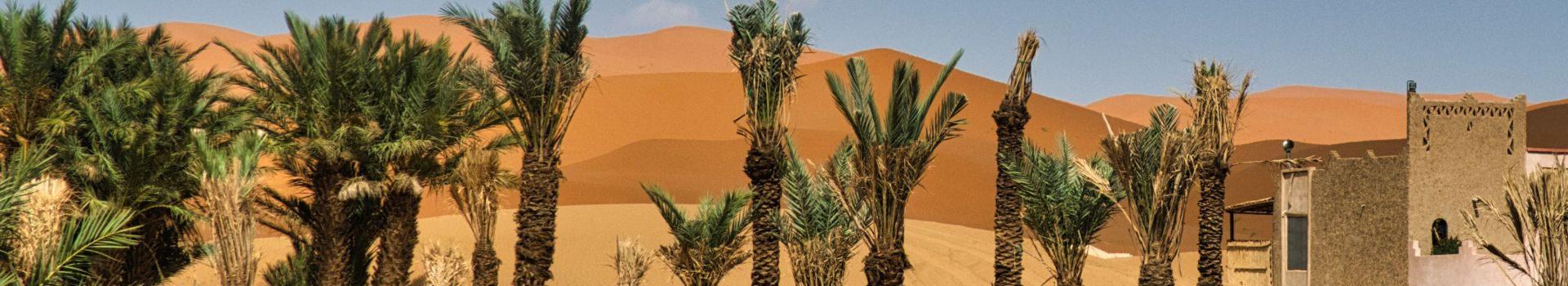 [Erlebnisbericht] Die fantastische Sandwüste bei Merzouga