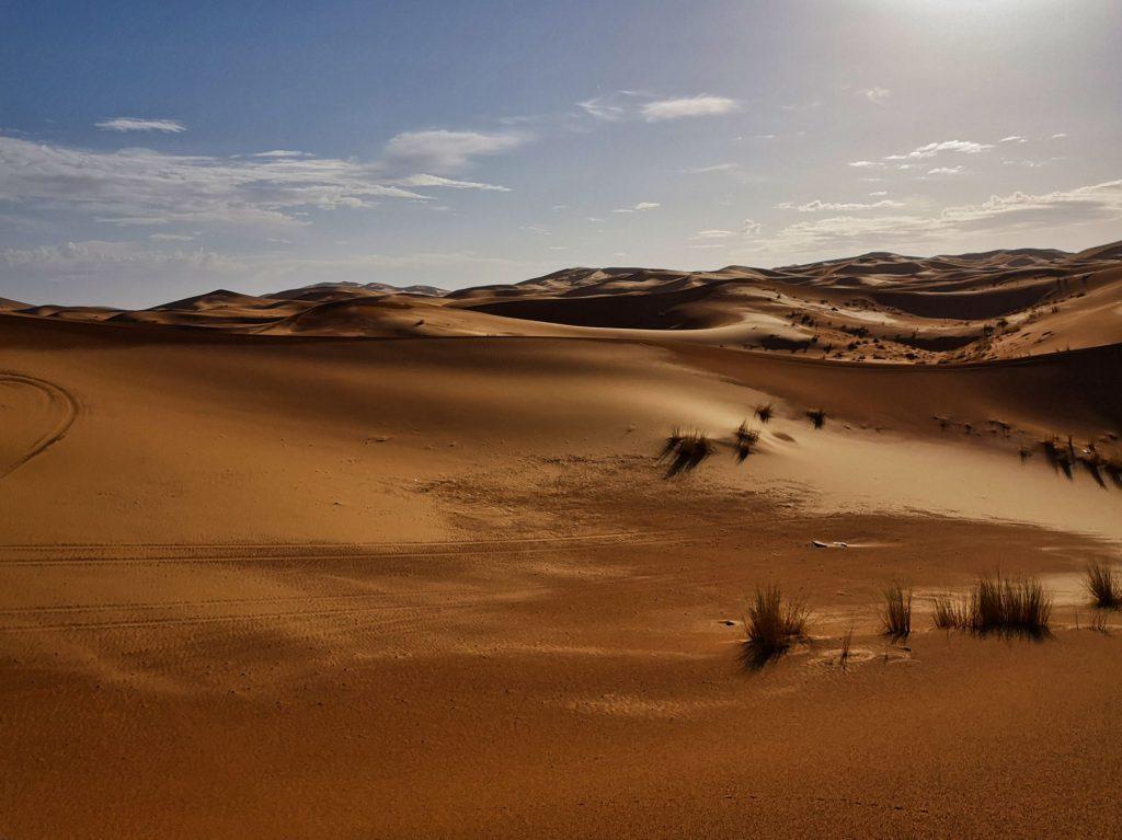 Die Dünen von Merzouga glänzen im Gegenlicht