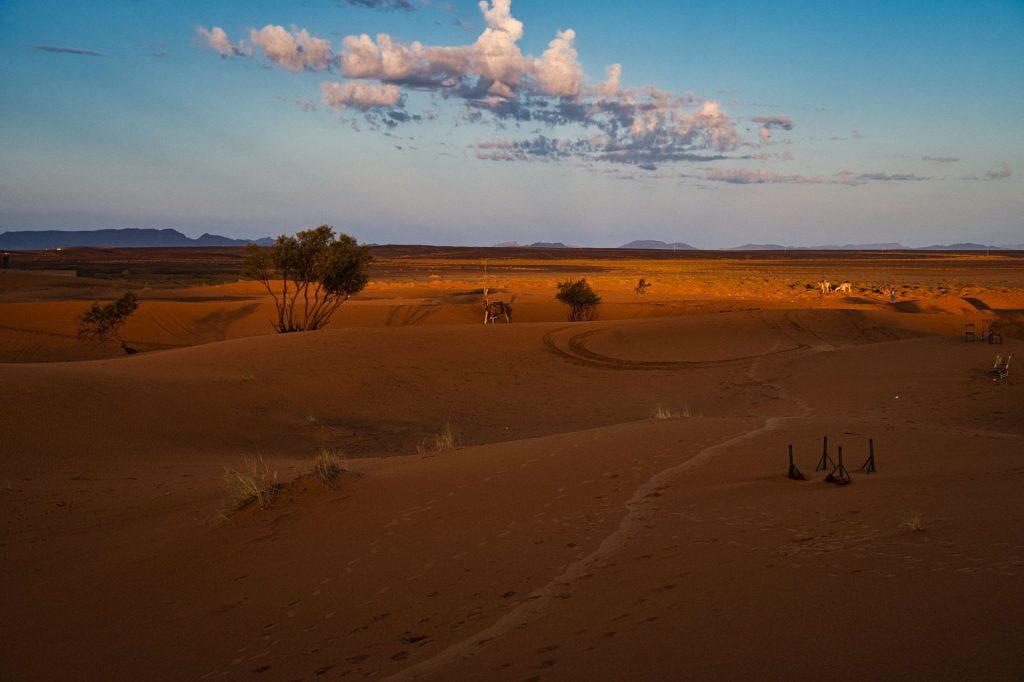 Sonnenaufgang am Rand der Wüste