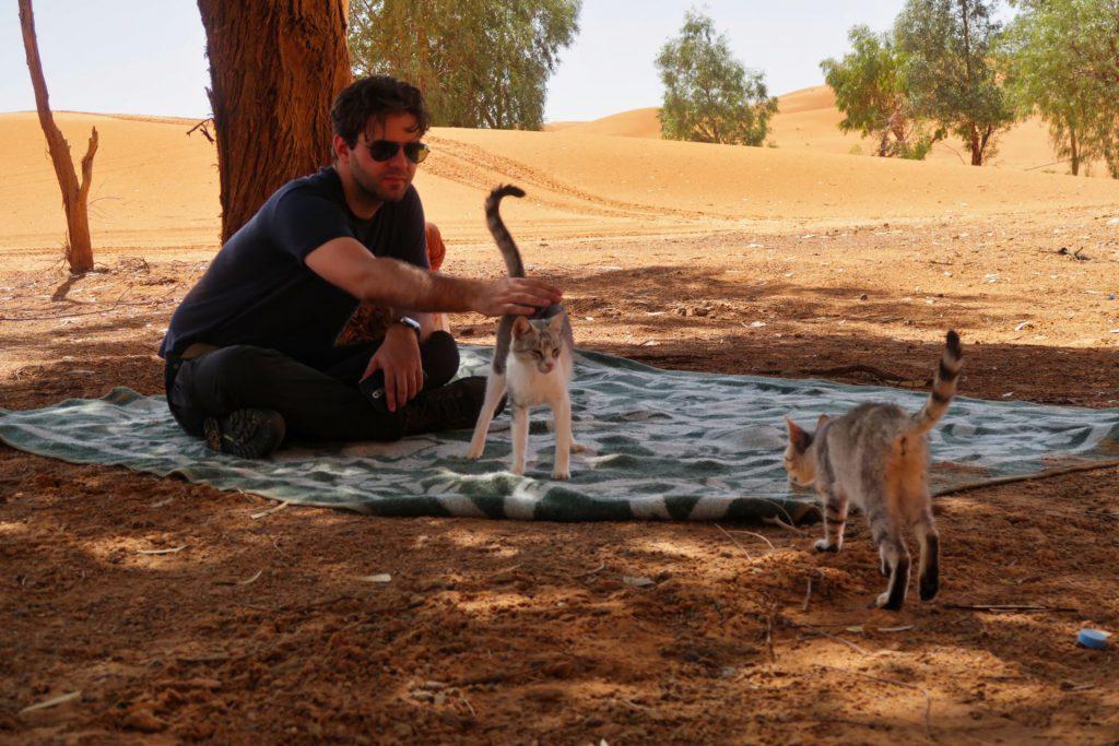 Pierre und die beiden niedlichen Katzenfreunde  in der Oase