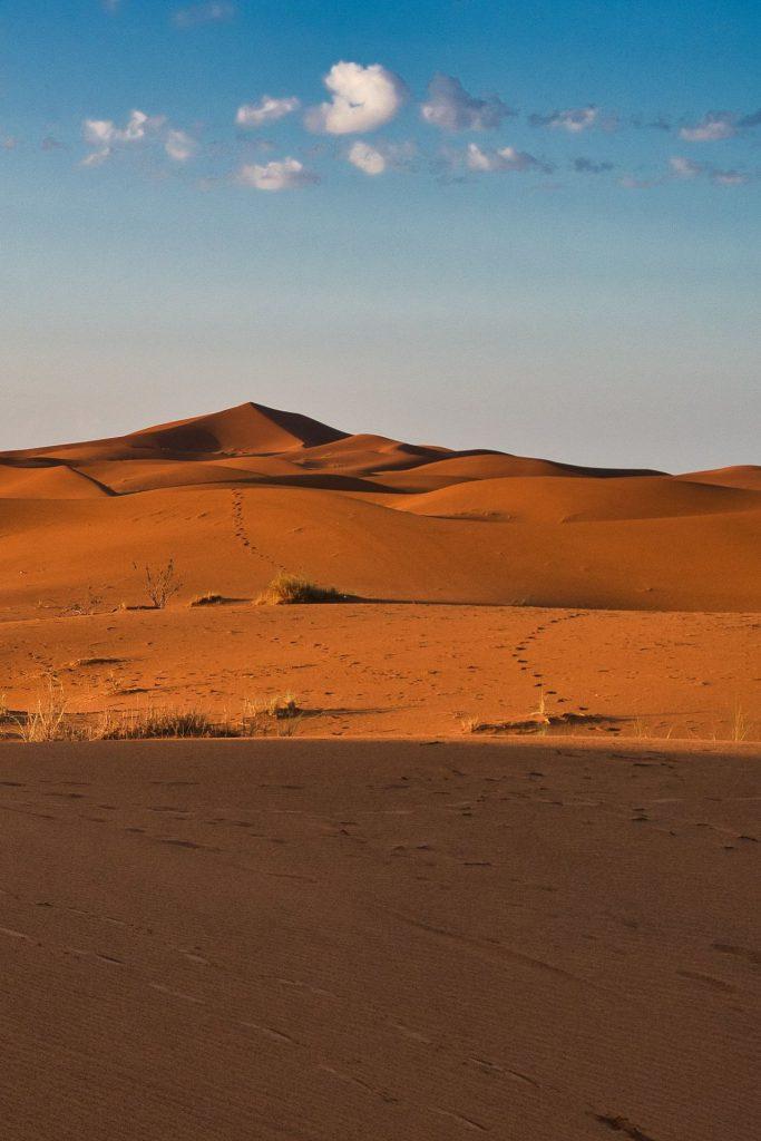 Sanddünen am Rande von Erg Chebbi