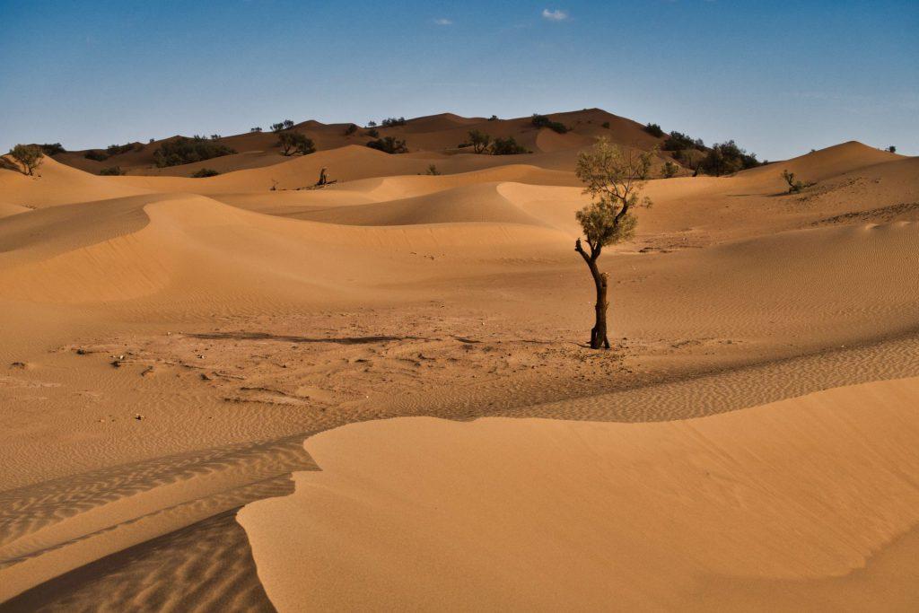 Sanddünen von Zagora mit Wolkenschatten