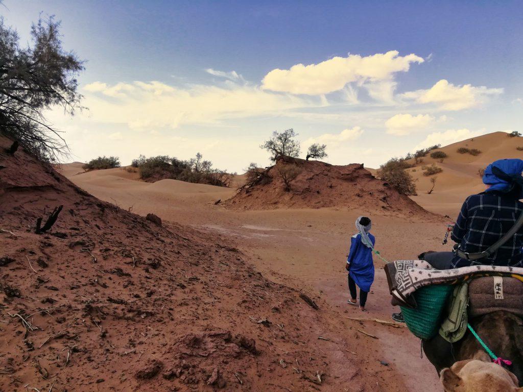 Die eigenartige Wüste nördlich von Ouled Driss