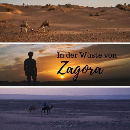 Erfahrungsbericht: Wüste von Zagora