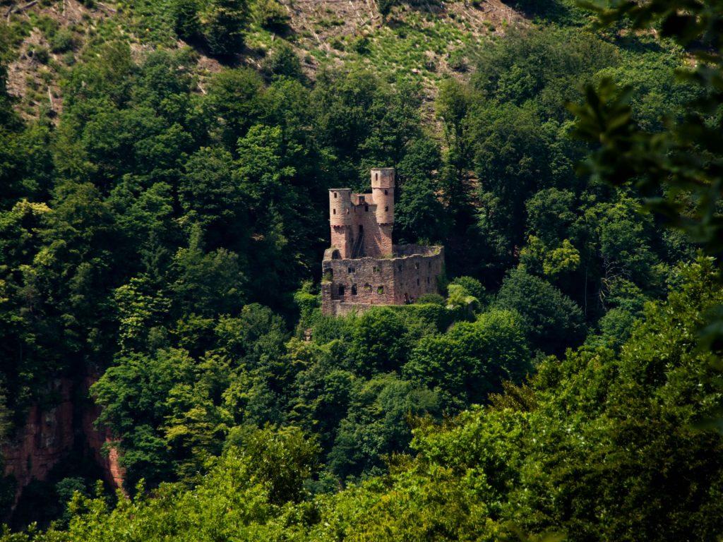 Burg Schadeck bei Neckarsteinach